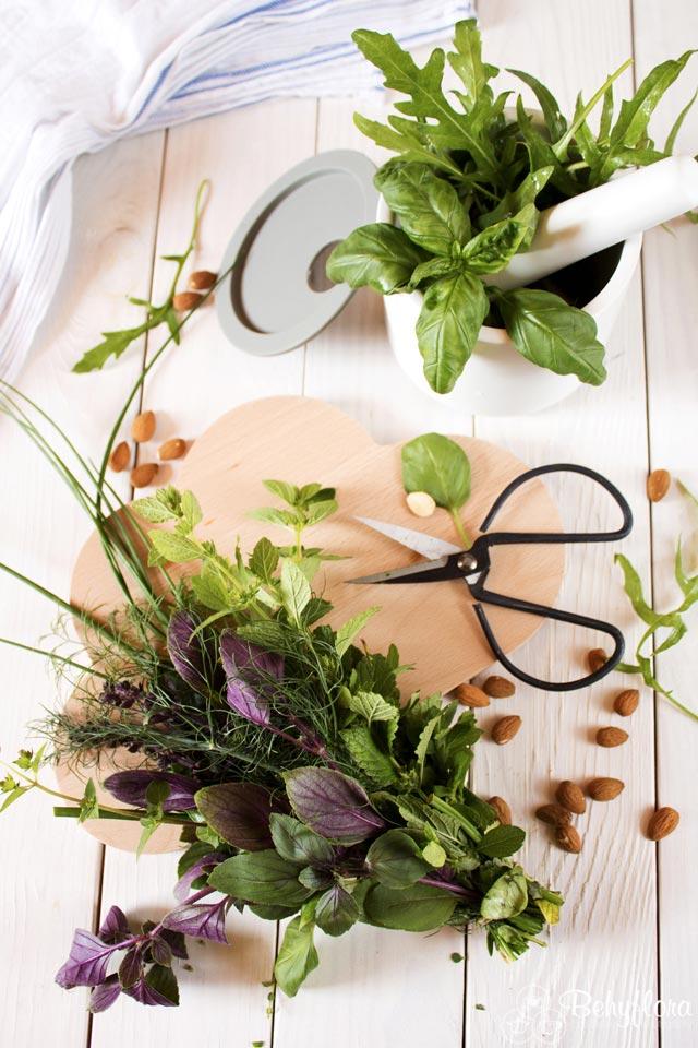 Diese Kräuter brauchst du für dein Gartenkräuterpesto