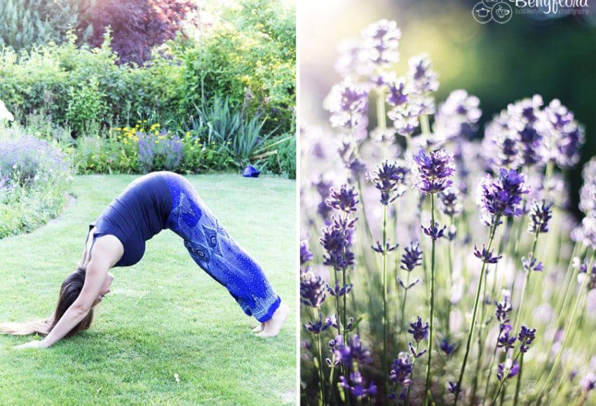 Yoga - Herabschauender Hund mit Lavendel