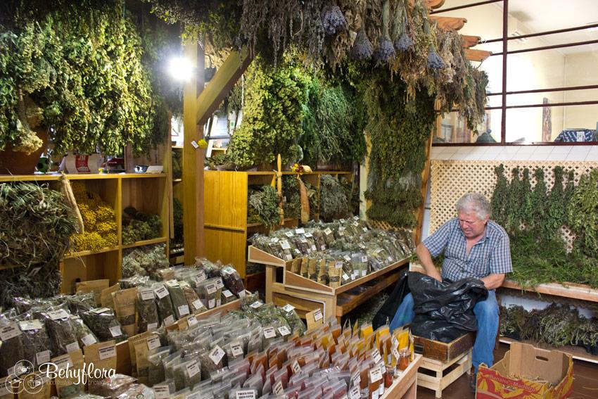 Kräuter und GEwürze in den Markthallen von Funchal