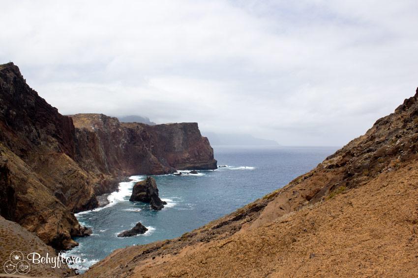 Die Steilklippen an der Küste Madeiras