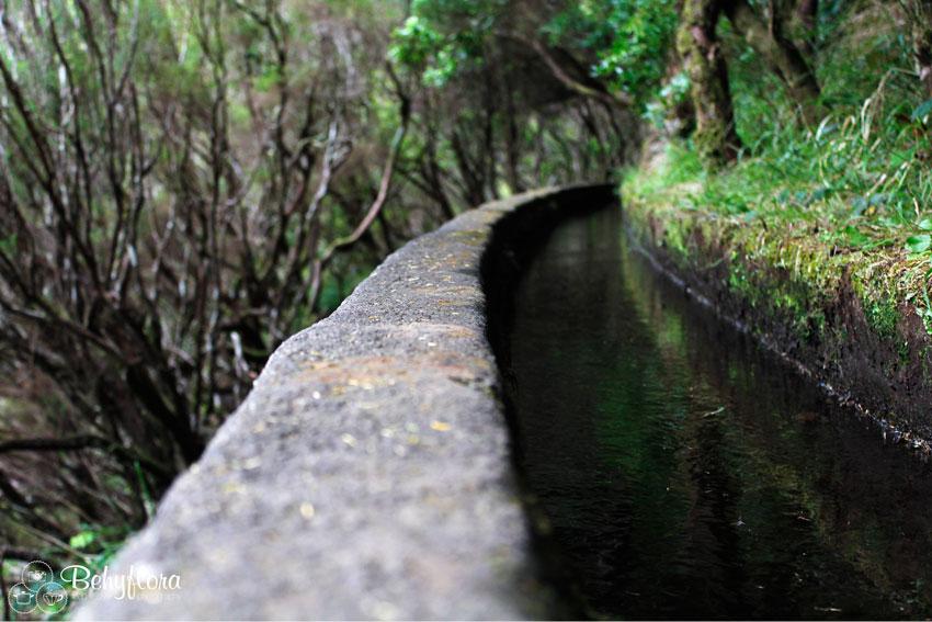 Wasserkanal - Levada