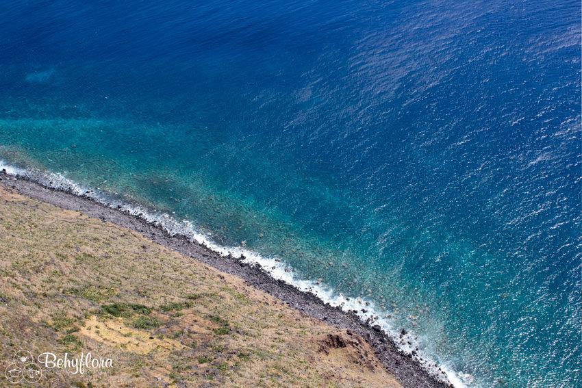 Der Sinn des Lebens wird vielleicht am Meer klarer