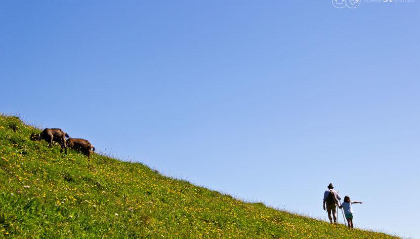 Berge als Wegweiser zur Freiheit