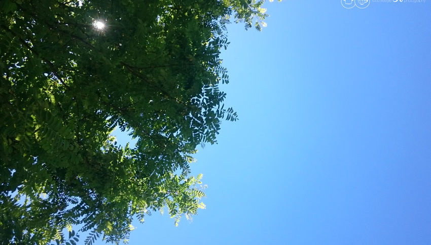 Der Blick in den Himmel gibt Zuversicht, um seine Ziele zu erreichen