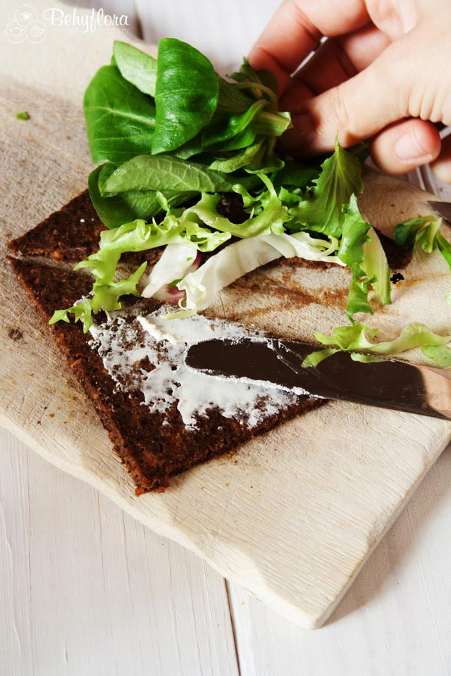 Rohkostbrot mit Salat