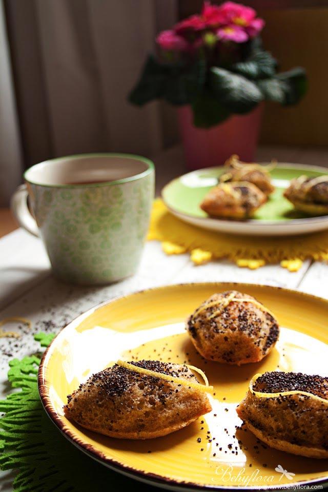 Madleines mit Orangen Curd zum Kaffee